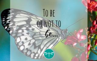 zijn, verlangen, je eigen pad bewandelen, je eigen plan trekken, zelfvertrouwen, piekeren, zinvol leven en werken